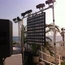 Mariage-Palm-Beach
